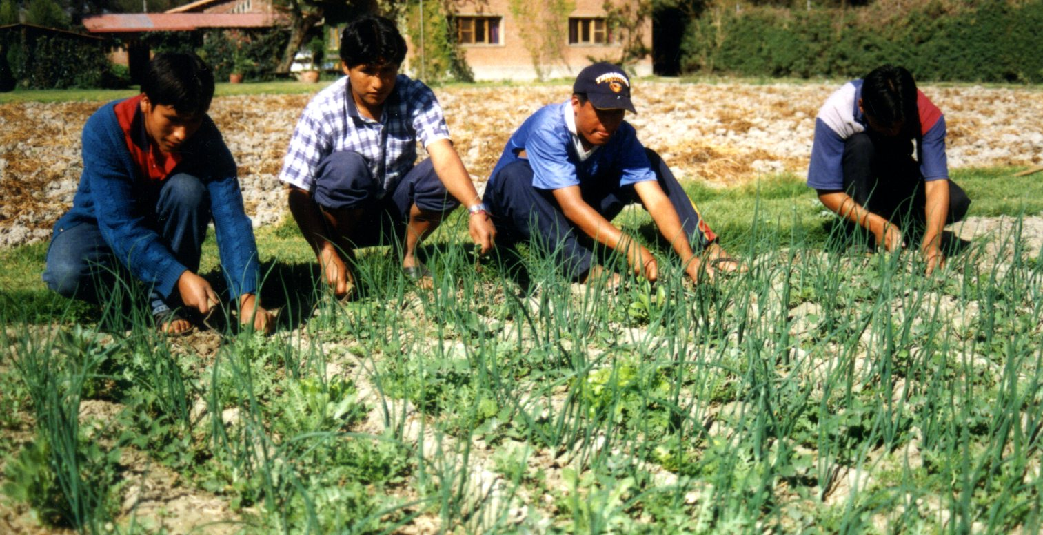 CADECA 4. Gartenarbeit